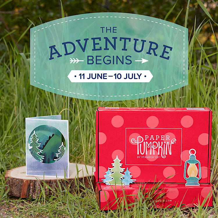 This is a photo advertising the July Paper Pumpkin Kit called the Adventure Begins.  It includes an example card with trees and some embellishments of trees and a lantern.